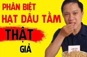 phan-biet-dau-tam-that-gia